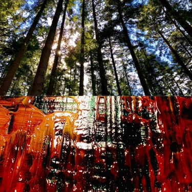 Art inspired by Nature - Forest